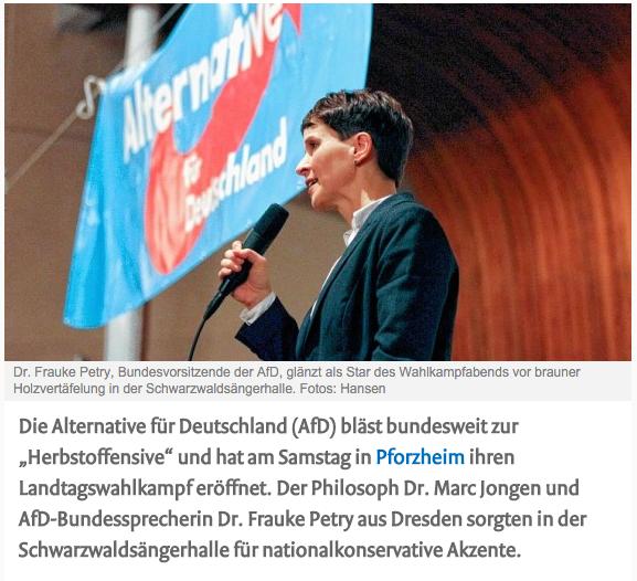 Muehlacker Tageblatt online